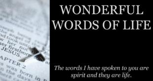wonderful-words