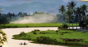 vietnam-countryside