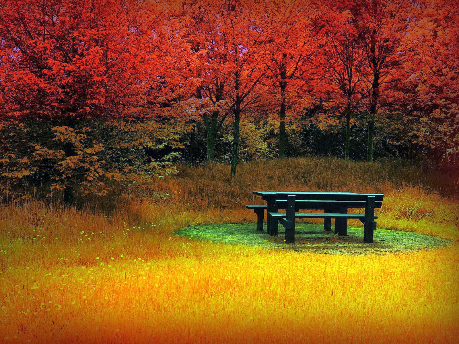 Beautiful-Autumn-Wallpapers15